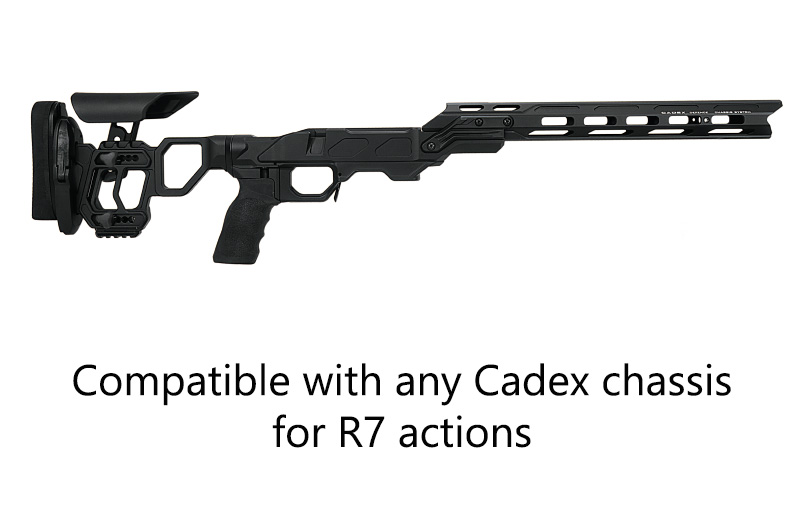 CDX-R7 Action